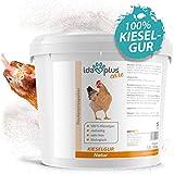 Ida Plus – Kieselgur Natur 12 Liter im Eimer – Biologische Kieselerde als Pulver – das Bio Produkt für ihren Hühnerstall & Garten – gut für Hühner, Wachteln & anderes Geflügel