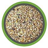 KÖRNER-VITAL 30 kg - Premium Körner Hühnerfutter und Wachtelfutter mit gebrochenem Mais, Weizen, Milokorn, Erbsen, Gerste, Sonnenblumenkernen, Kardisaat, Muschelgrit