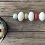 Hühner Eierfarbe Braun Weiß Grün