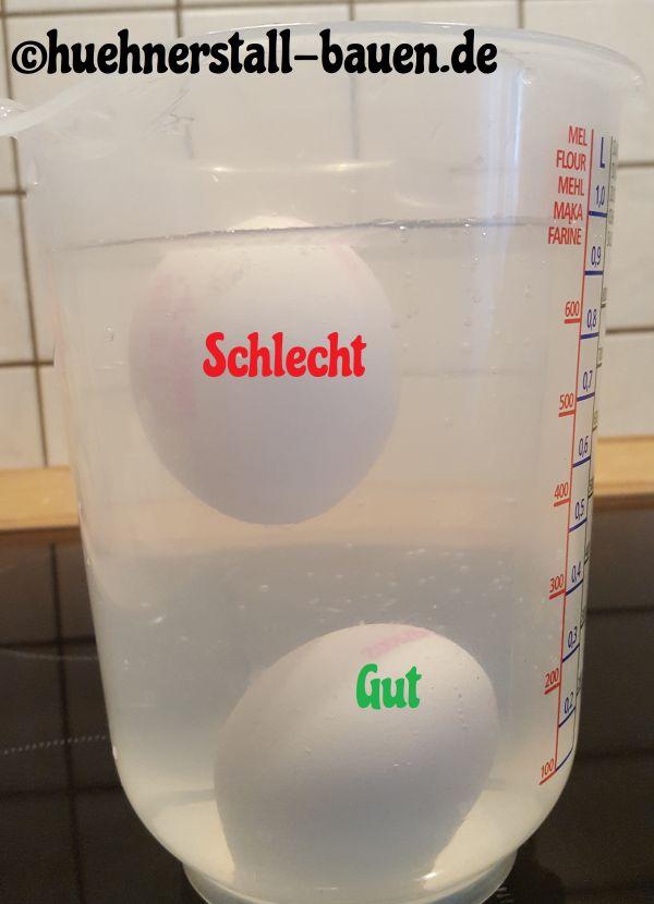 Frischetest abgelaufene Eier