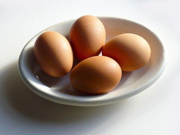 Hühnerstall Test Vergleich Eier